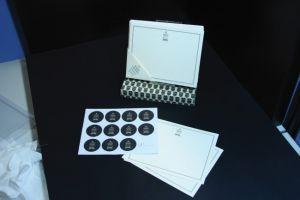Notelets-Silver Birdcage