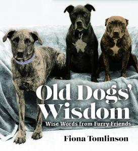 OLD DOGS' WISDOM