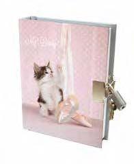 Lock-Up Diary - Ballet Kitten