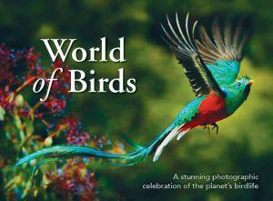 World of Birds