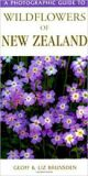 A Photographic Guide to Wildflowers of New Zealand